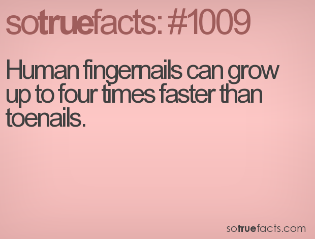 Human fingernails can grow up to four times faster than toenails.