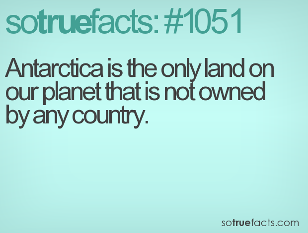 Antarctica is the only land on our planet that is not owned by any country.