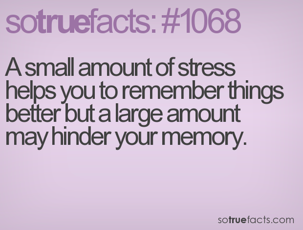 A small amount of stress helps you to remember things better but a large amount may hinder your memory.