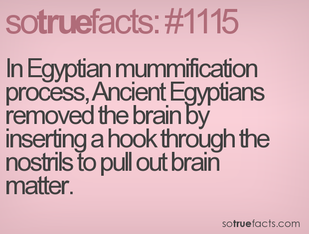 In Egyptian mummification process, Ancient Egyptians removed the brain by inserting a hook through the nostrils to pull out brain matter.
