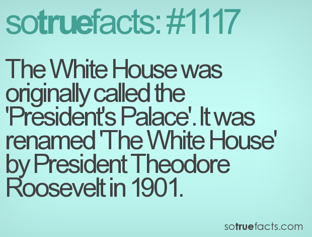 The White House was originally called the 'President's Palace'. It was renamed 'The White House' by President Theodore Roosevelt in 1901.