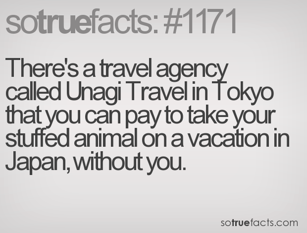 There's a travel agency called Unagi Travel in Tokyo that you can pay to take your stuffed animal on a vacation in Japan, without you.