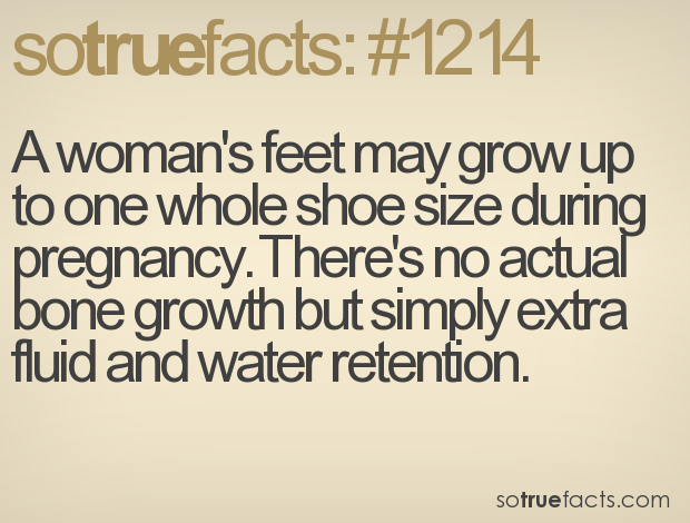 A woman's feet may grow up to one whole shoe size during pregnancy. There's no actual bone growth but simply extra fluid and water retention.