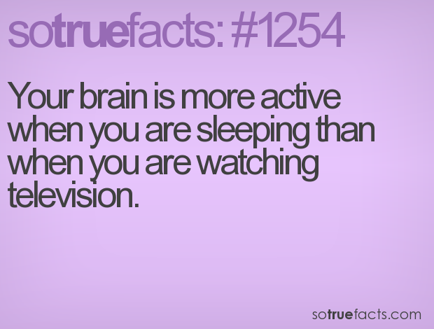 Your brain is more active when you are sleeping than when you are watching television.