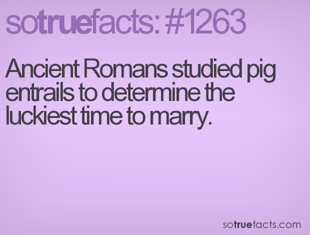 Ancient Romans studied pig entrails to determine the luckiest time to marry.