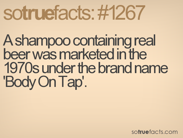 A shampoo containing real beer was marketed in the 1970s under the brand name 'Body On Tap'.