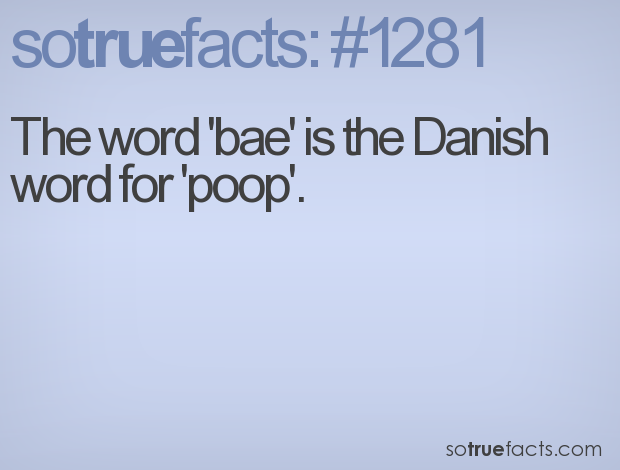 The word 'bae' is the Danish word for 'poop'.