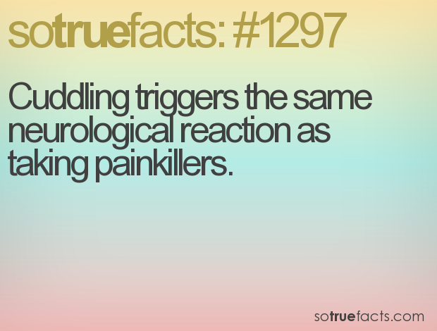 Cuddling triggers the same neurological reaction as taking painkillers.