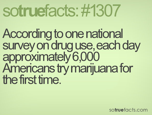 According to one national survey on drug use, each day approximately 6,000 Americans try marijuana for the first time.