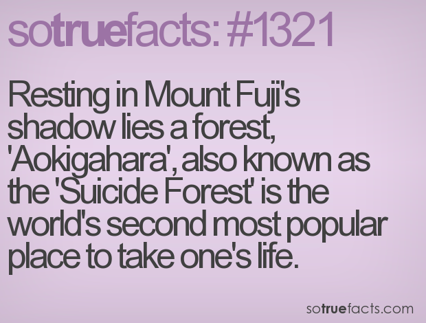 Resting in Mount Fuji's shadow lies a forest, 'Aokigahara', also known as the 'Suicide Forest' is the world's second most popular place to take one's life.