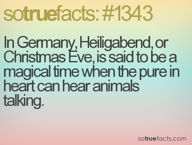 In Germany, Heiligabend, or Christmas Eve, is said to be a magical time when the pure in heart can hear animals talking.