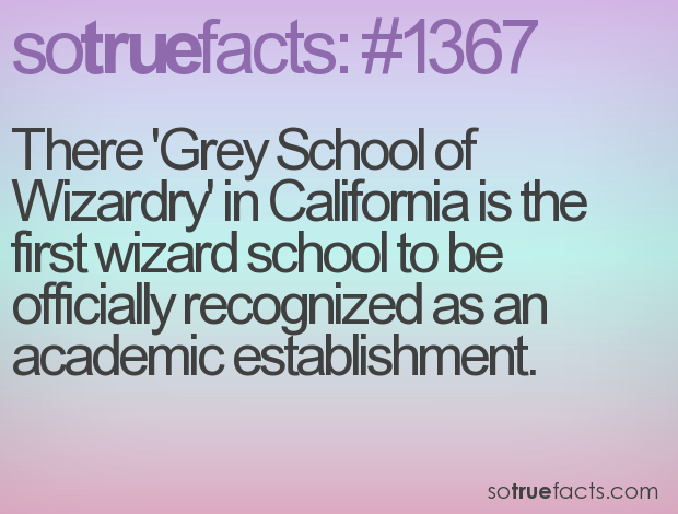 There 'Grey School of Wizardry' in California is the first wizard school to be officially recognized as an academic establishment.
