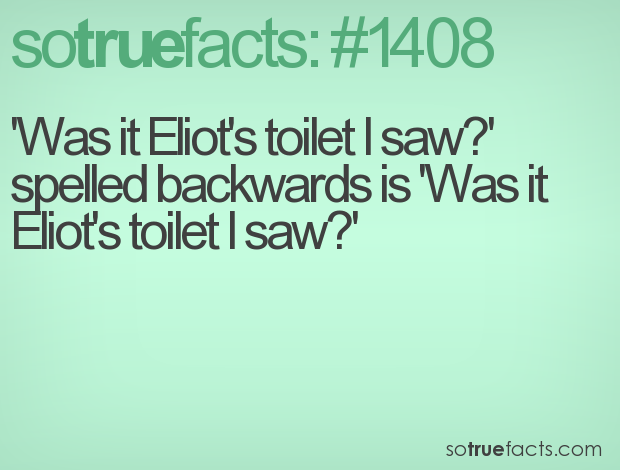 'Was it Eliot's toilet I saw?' spelled backwards is 'Was it Eliot's toilet I saw?'