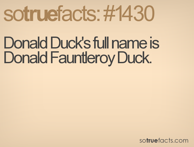 Donald Duck's full name is Donald Fauntleroy Duck.
