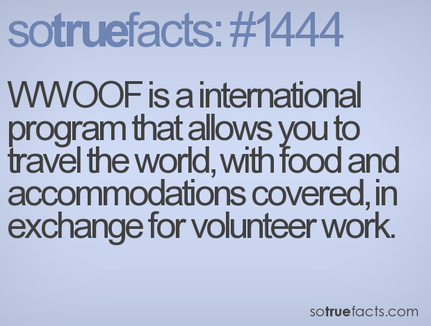 WWOOF is a international program that allows you to travel the world, with food and accommodations covered, in exchange for volunteer work.