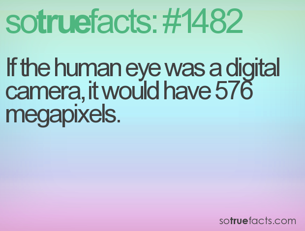 If the human eye was a digital camera, it would have 576 megapixels.