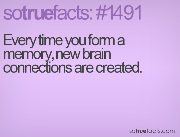 Every time you form a memory, new brain connections are created.