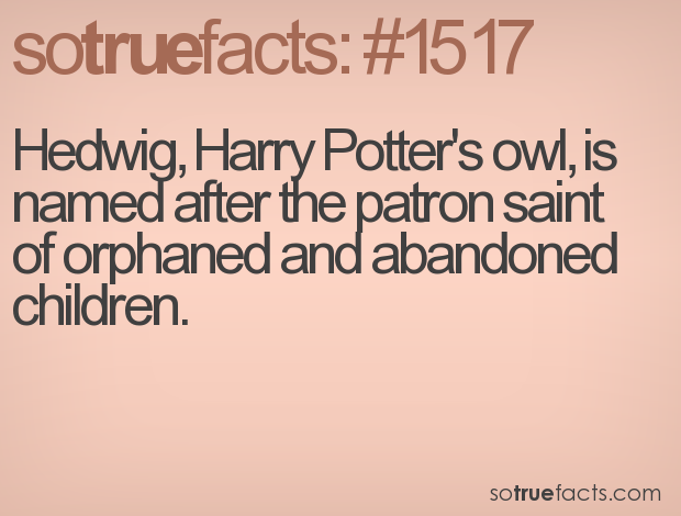 Hedwig, Harry Potter's owl, is named after the patron saint of orphaned and abandoned children.