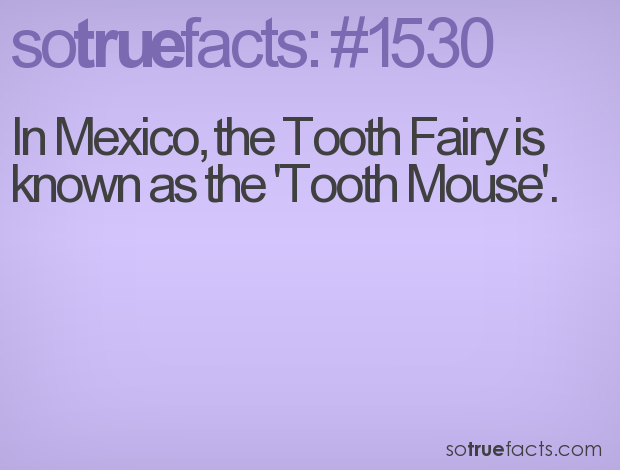 In Mexico, the Tooth Fairy is known as the 'Tooth Mouse'.