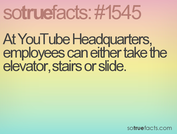 At YouTube Headquarters, employees can either take the elevator, stairs or slide.
