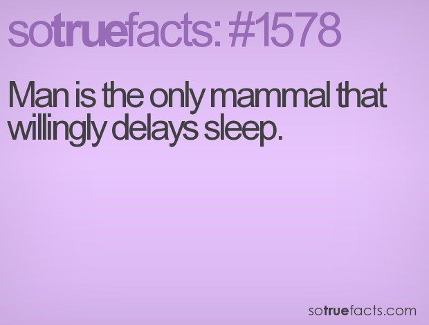 Man is the only mammal that willingly delays sleep.