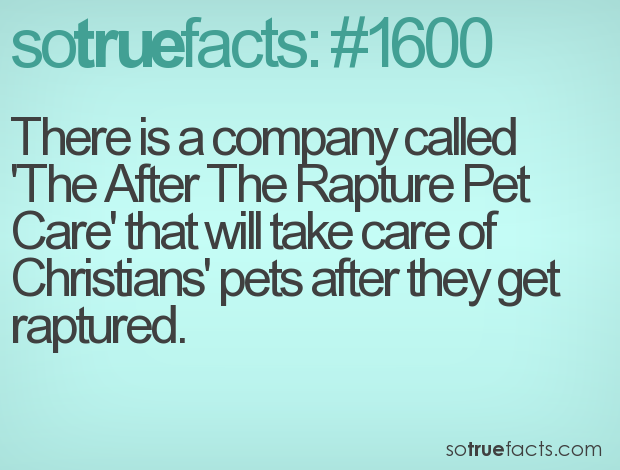 There is a company called 'The After The Rapture Pet Care' that will take care of Christians' pets after they get raptured.