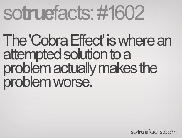 The 'Cobra Effect' is where an attempted solution to a problem actually makes the problem worse.