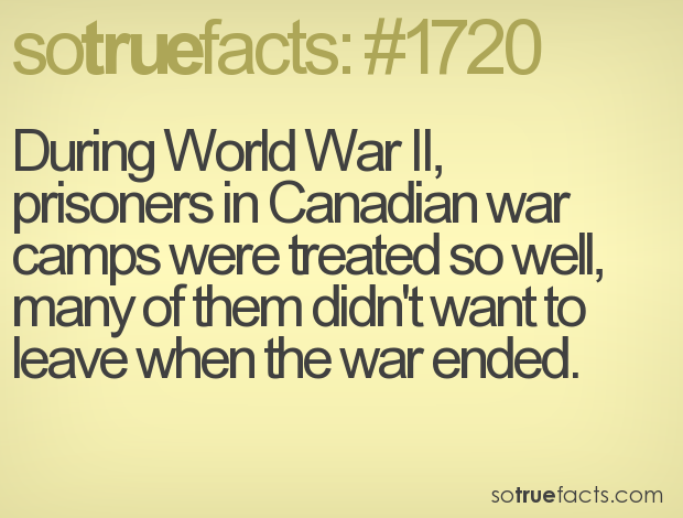 During World War II, prisoners in Canadian war camps were treated so well, many of them didn't want to leave when the war ended.