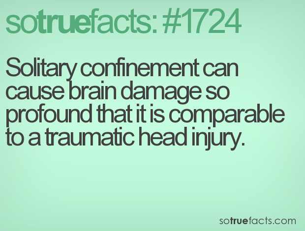 Solitary confinement can cause brain damage so profound that it is comparable to a traumatic head injury.