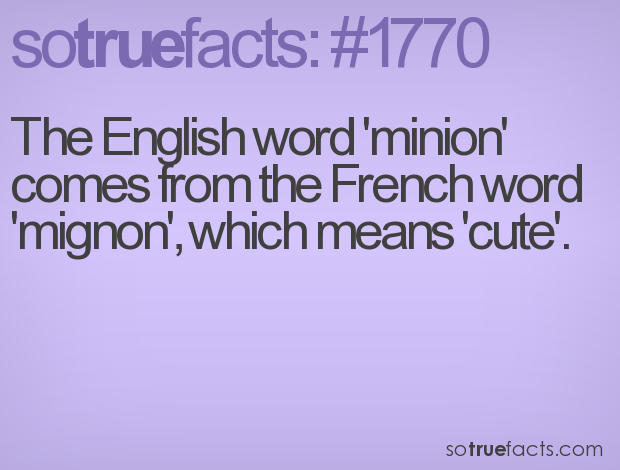 The English word 'minion' comes from the French word 'mignon', which means 'cute'.