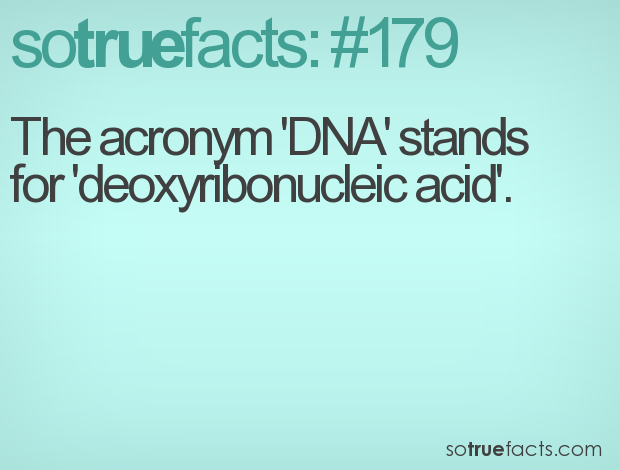the acronym dna stands for deoxyribonucleic acid
