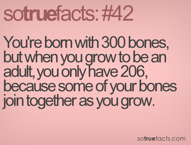 You're born with 300 bones, but when you grow to be an adult, you only have 206, because some of your bones join together as you grow.