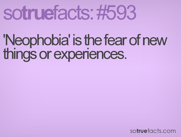 'Neophobia' is the fear of new things or experiences.