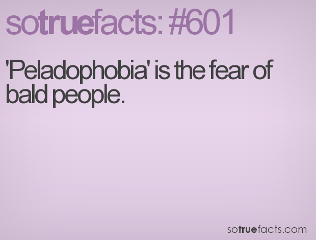 'Peladophobia' is the fear of bald people.
