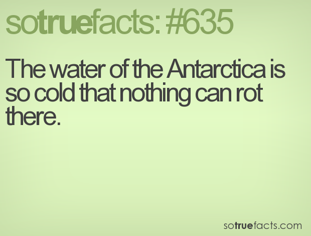 The water of the Antarctica is so cold that nothing can rot there.