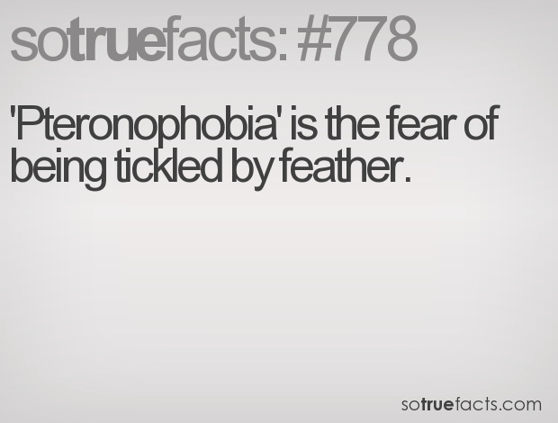 'Pteronophobia' is the fear of being tickled by feather.