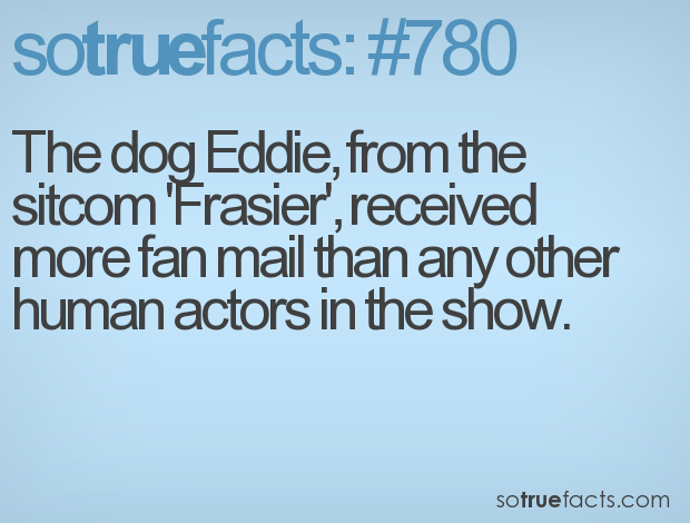 The dog Eddie, from the sitcom 'Frasier', received more fan mail than any other human actors in the show.
