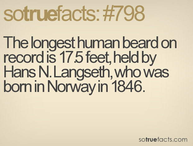 The longest human beard on record is 17.5 feet, held by Hans N. Langseth, who was born in Norway in 1846.