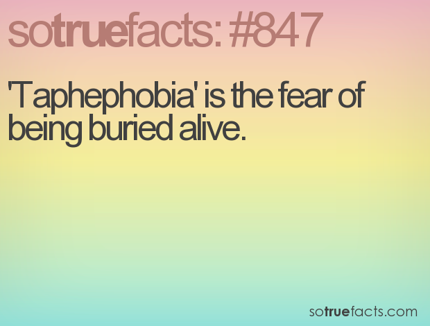 'Taphephobia' is the fear of being buried alive.