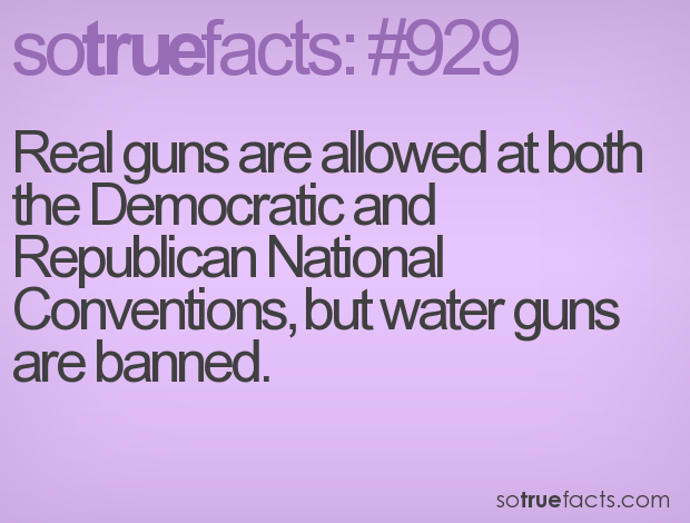 Real guns are allowed at both the Democratic and Republican National Conventions, but water guns are banned.