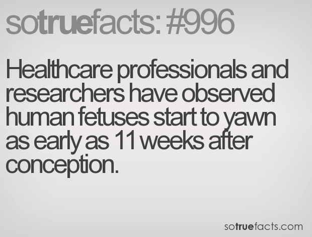 Healthcare professionals and researchers have observed human fetuses start to yawn as early as 11 weeks after conception.