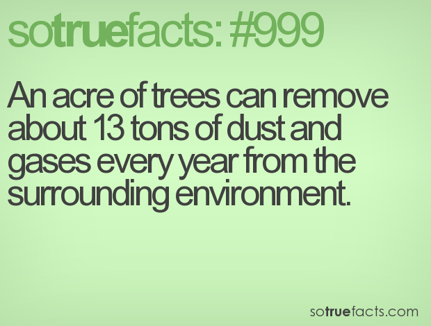 An acre of trees can remove about 13 tons of dust and gases every year from the surrounding environment.